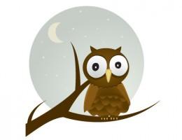 35870400c54730296753482d644b50bd-free-vector-owl