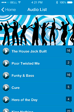 Audio List